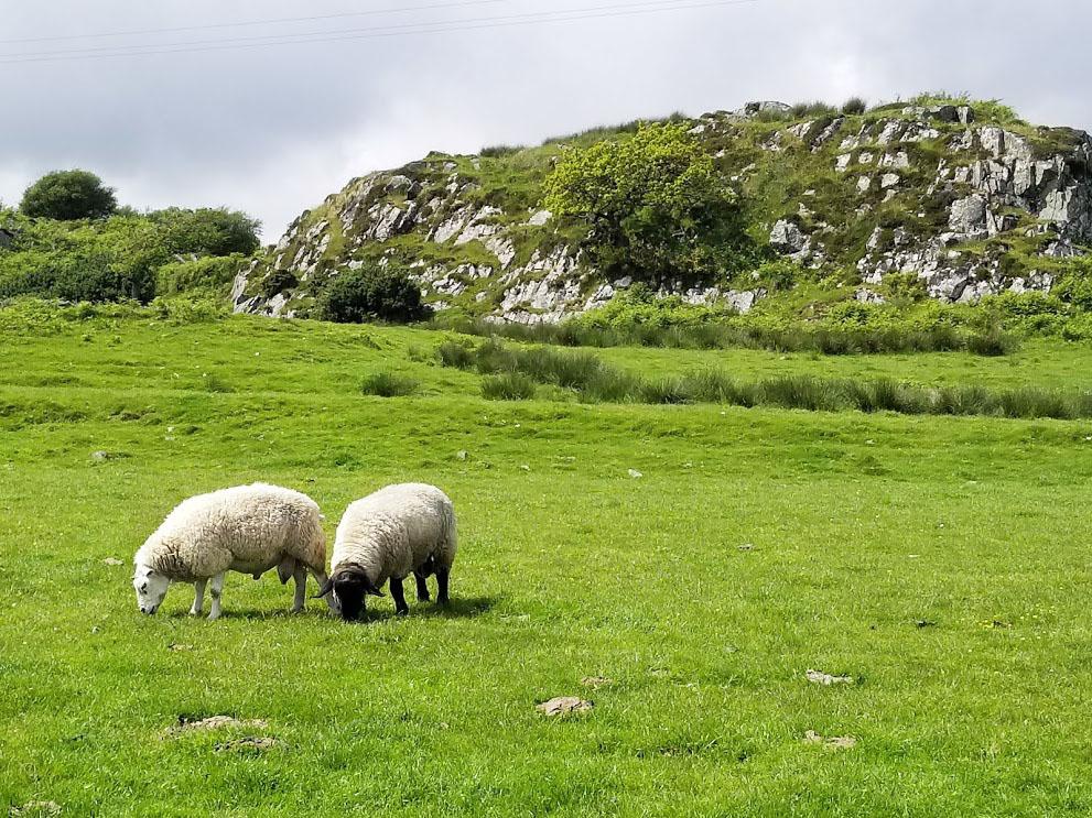 travel blog: islay, scotland
