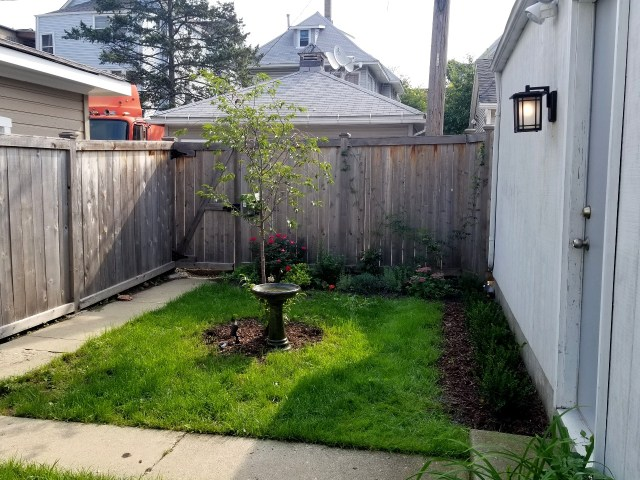 The before picture of my city garden space in Chicago.
