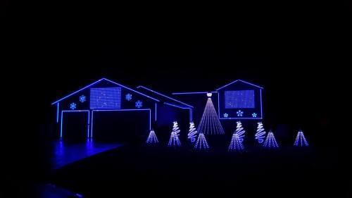SnoMutt Lights.jpg