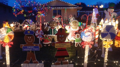 crazy christmas display.jpg