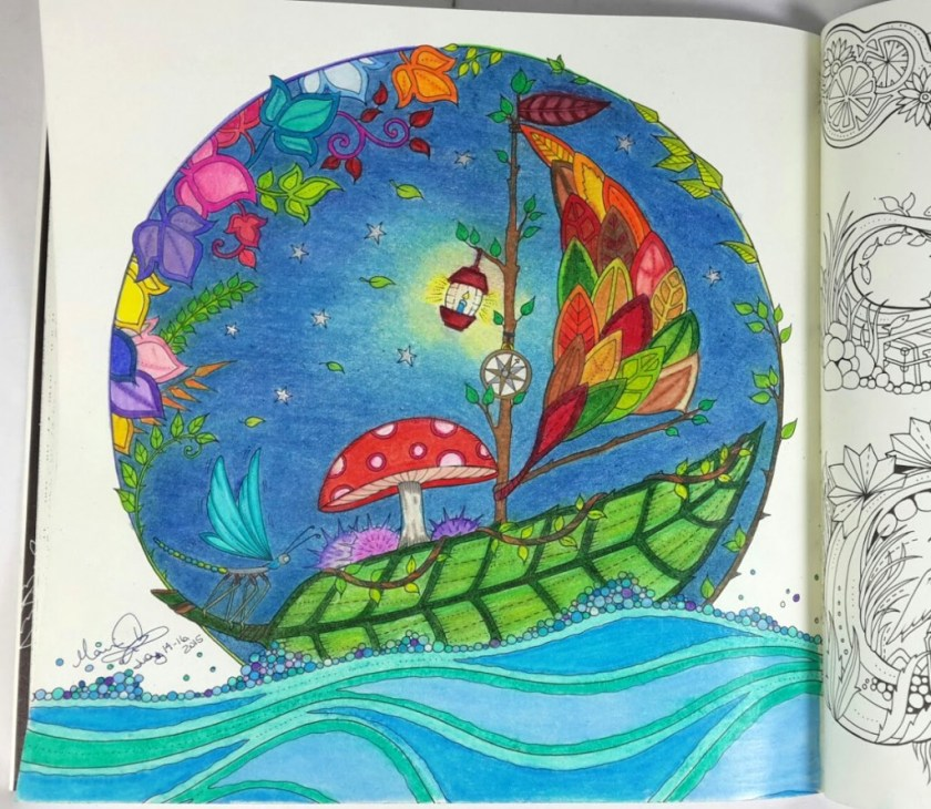 coloring for grown ups  given eyes to see