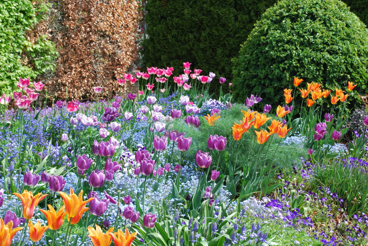 Better Homes And Gardens Fall Desktop Wallpaper Giverny Giverny Zone 8