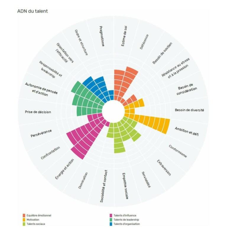 Analyse-TMA-des-talents_Passeport-de-talents-et-de-compétences_M.-X_ANONYME