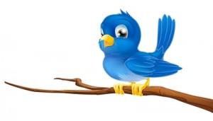 tweet twig