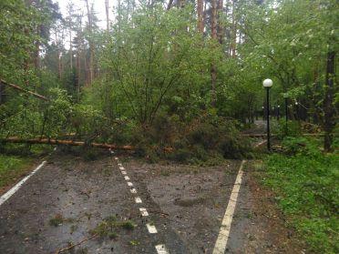 Последствия урагана в Москве и Подмосковье 29 мая