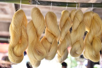 Dried silks after extraction