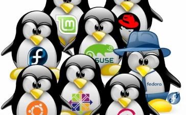 Distribuzioni di Linux