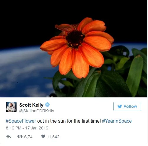 Twitt Scott Kelly