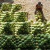 Melancias em um mercado de frutas em Hyderabad em 2020.