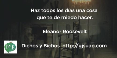 Miedo - Roosevelt
