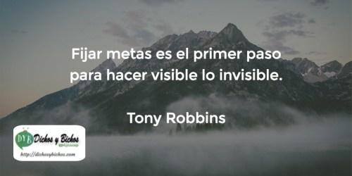 Metas - Robbins