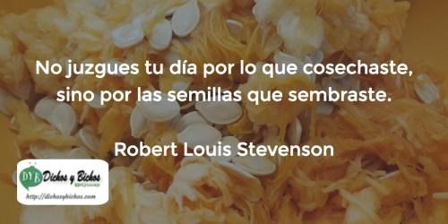 Siembra - Stevenson