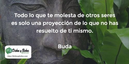 Molestia - Buda