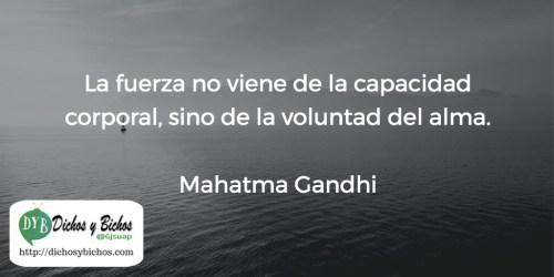 Fuerza - Gandhi