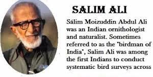 Salim Ali- Indian Scientist