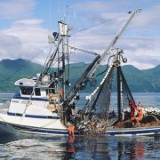 Sea Fishing Vessel