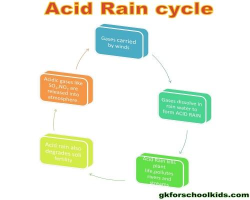 small resolution of acid rain 1 acid flow