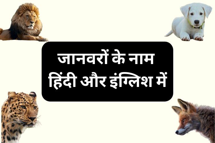 सभी जानवरों के नाम हिंदी इंग्लिश में - Janvaro ke Naam Hindi aur English mein