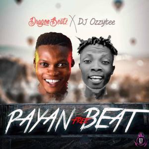 Download Dragon Beatz ft DJ Ozzytee — Payan Free Beat (Instrumental)