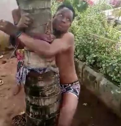 Gay Boys Tied Up And Flogged Mercilessly In Anambra Over Homosexuality (Photo)
