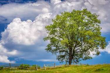 """""""Summer Clouds"""", Canon 5D Mk3, 70-200mm f/2.8L Mk2, Singh-Ray Color Combo Polarizer"""