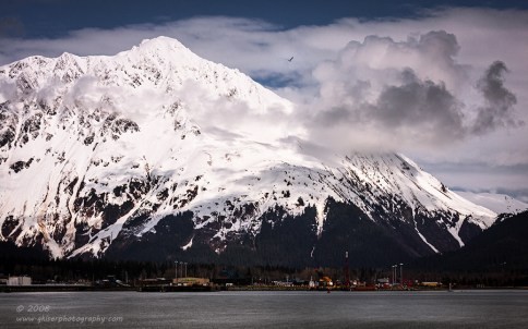 """""""Seward and the Gull"""", Canon 40D, 70-200mm f/4L, No filters"""