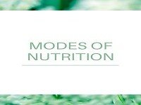 Modes of Nutrition: Autotrophic & Heterotrophic