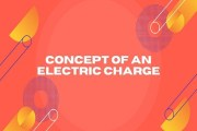 Concept of an Electric Charge