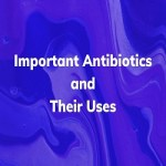 Important Antibiotics and their Uses