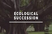 Ecological Succession or Biotic Succession