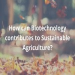 Biotechnology contributes to Sustainable Agriculture