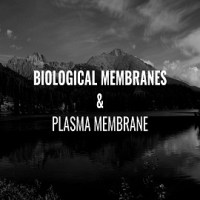 What are biological membranes and their significance? Also, give the functions of Plasma membrane