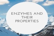 Enzymes And Their Properties