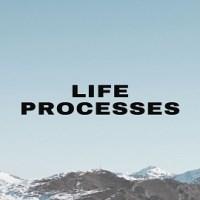 Explain the term Life Processes
