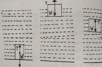 equilibrium conditions - Flotation of Bodies