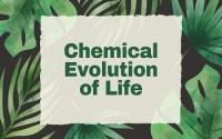 Chemical Evolution of Life