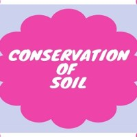 Explain the measures to be taken for the conservation of soil?