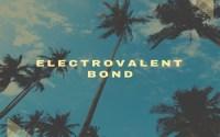 Electrovalent Bond