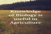 Mention any four ways in which the knowledge of biology is useful in agriculture