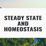 Steady State and Homeostasis