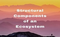Structural Components of an Ecosystem