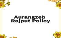 Aurangzeb Rajput Policy