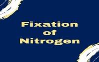 Fixation of Nitrogen