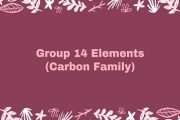 Group 14 Elements (Carbon Family)
