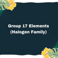 Group 17 Elements (Halogen Family)