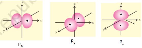 p orbital - Shapes of Atomic Orbitals