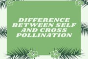 Difference Between Self and Cross Pollination
