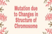 Mutation due to Changes in Structure of Chromosome
