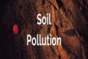Soil Pollution- Sources, Effects and Control Measures