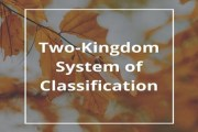 Two-Kingdom System of Classification